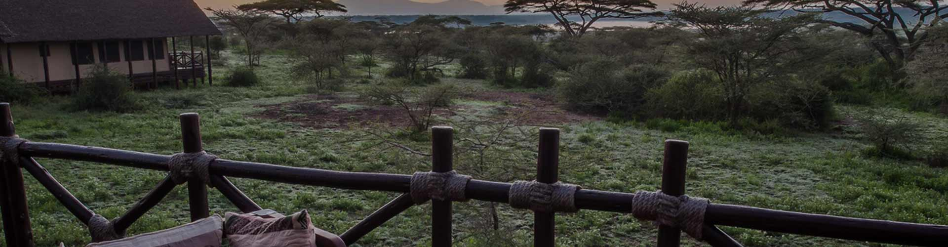 Ndutu Luxury Tented Lodge