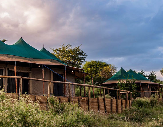 Acacia Tarangire Luxury Camps