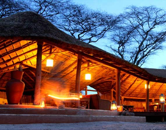 Little Olivers Camp Safaris